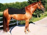 Back On Track Ryggvärmare Häst