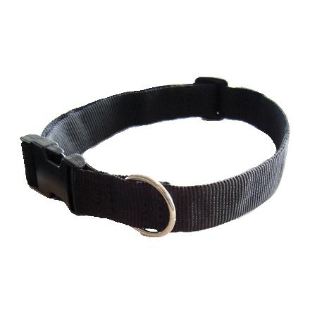 Magnet hundhalsband
